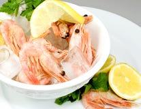 Interpréteur de commandes-sur des crevettes roses Photographie stock libre de droits