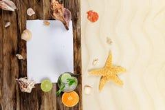 Interpréteurs de commandes interactifs de mer Photo stock