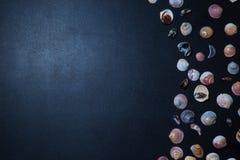 Interpréteurs de commandes interactifs de mer image stock
