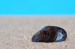 Interpréteurs de commandes interactifs de mer en sable Photographie stock libre de droits