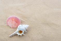 Interpréteurs de commandes interactifs sur la plage images stock