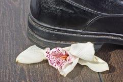 Interpretação visual do esforço com flor da orquídea fotografia de stock
