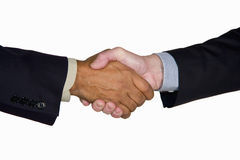 Interracial business handshake Stock Image