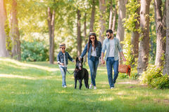 Interracial family with dog holding hands and walking in sunny forest. Young interracial family with dog holding hands and walking in sunny forest stock photos