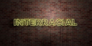 INTERRACIAL - fluorescent Neon tube Sign on brickwork - Front view - 3D rendered royalty free stock picture Stock Images