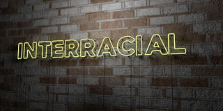 INTERRACIAL - Glowing Neon Sign on stonework wall - 3D rendered royalty free stock illustration Royalty Free Stock Photo