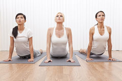 Interracial Group Beautiful Women In Yoga Position. An interracial group of three beautiful young women stretching in a yoga position at a gym stock photography