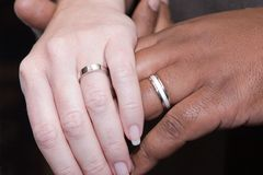 Interracial hands with wedding rings Royalty Free Stock Photo