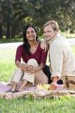 Interracial paar dat picknick in park heeft stock afbeelding
