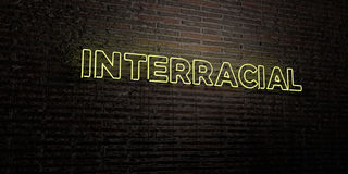 INTERRACIAL -Realistic Neon Sign on Brick Wall background - 3D rendered royalty free stock image Stock Photography