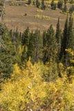 Interrupção Wyoming do Lander da passagem de Salt River fotos de stock