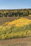 Interrupção Wyoming do Lander da passagem de Salt River imagens de stock