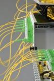 Interruptor ótico do painel de distribuição da fibra com cabos imagens de stock royalty free