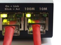 Interruptor de red con dos cables de Ethernet rojos Imagen de archivo libre de regalías