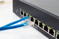 Interruptor de red del LAN con los cables de Ethernet que enchufan Fotografía de archivo