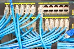 Interruptor de red y cables de Ethernet Fotografía de archivo libre de regalías