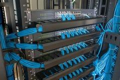 Interruptor de red y cables de Ethernet en gabinete del estante imagen de archivo libre de regalías