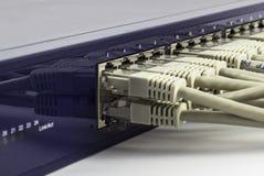 Interruptor de rede Fotos de Stock Royalty Free