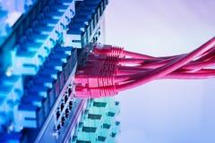 Interruptor de rede e cabos ethernet, conceito do centro de dados fotografia de stock royalty free