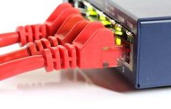 Interruptor del ranurador de la red de Ethernet con los cables rojos Foto de archivo libre de regalías