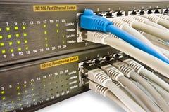 Interruptor e cabo da rede Imagem de Stock Royalty Free