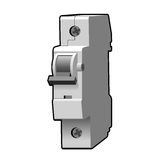 Interruptor moldado do caso Fotos de Stock Royalty Free