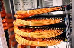 Interruptores de red Foto de archivo