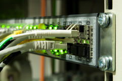 Interruttore di Ethernet su una cremagliera Fotografie Stock Libere da Diritti