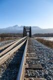 Interruttore e ponte della ferrovia Immagini Stock