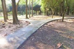 Interseção de três maneiras, estrada transversaa no jardim Foto de Stock