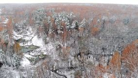 Aerial view autumn forest. Interseasonal landscape, flying above autumn birch forest, trees with orange leafs after first snow, lake and springs stock video