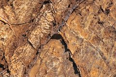 INTERSECTING PATTERN ON A ROCK. View of flat brown rock with intersecting grooves and  straight indentation lines Stock Photography