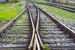 Intersection railroad tracks Stock Photography