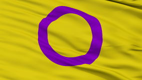 Intersex Close Up Waving Flag. Intersex Flag, Close Up Realistic 3D Animation, Seamless Loop - 10 Seconds Long stock video footage