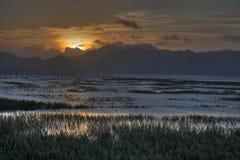 Intertidal zon för kinesiskt fiskeläge i solnedgång Royaltyfri Bild