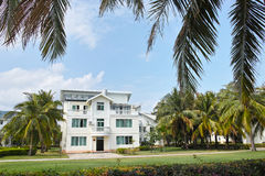 Intertropical hotel. The landscape of intertropical garden hotel stock image