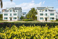 Intertropical hotel. The landscape of intertropical garden hotel stock photos