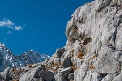 Intervalle de haute montagne photo libre de droits