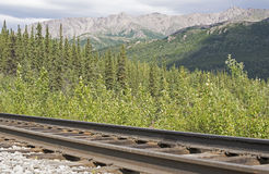 intervalle de montagne d'Alaska Image stock