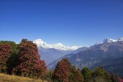 Intervallo di Annapurna Fotografie Stock