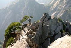 Intervallo di montagna pittoresco Fotografie Stock Libere da Diritti