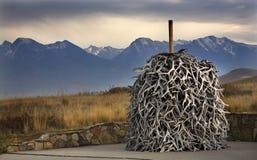 intervallo nazionale del mucchio del Montana dei corni degli alci di charlo del bisonte Fotografie Stock Libere da Diritti
