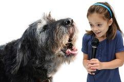Interview mit einem Hund lizenzfreies stockbild
