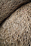 Interwoven wicker. Material in random shapes Stock Images