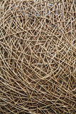 Interwoven wicker material. In abstract shapes Royalty Free Stock Image