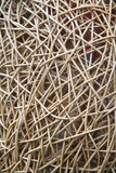 Interwoven wicker material. In abstract shapes Stock Images