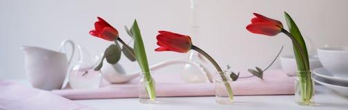 Intestazione, insegna per progettazione del sito Insieme dei piatti per servire, tulipani, rossi formato orizzontale, spazio per  Immagini Stock Libere da Diritti