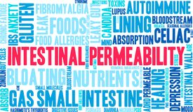 Intestinal Permeability Word Cloud. On a white background vector illustration