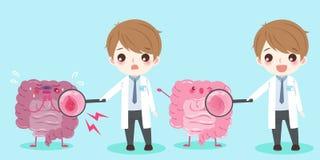 Intestine with health concept. Cute cartoon doctor and intestine with health concept Stock Images