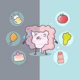 Intestino saudável e insalubre dos desenhos animados ilustração stock
